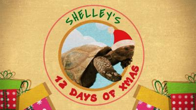 Blue Peter - Shelley's 12 Days of Christmas