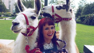 Blue Peter - Lindsey tries to interview llamas