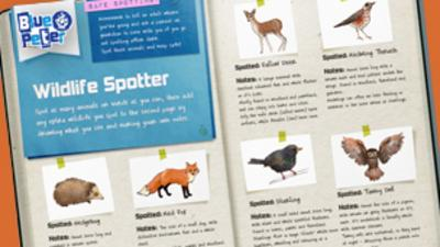 Blue Peter - Wildlife Spotter activity sheet