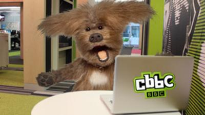 CBBC Office - Quiz: Can you keep Dodge safe online?