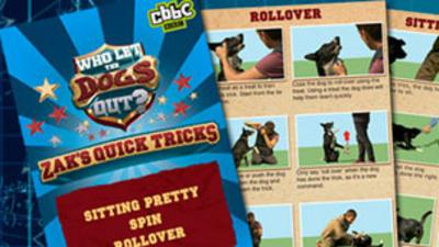 Who Let The Dogs Out?  - Zak's Quick Tricks booklet 1