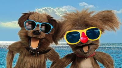 CBBC Office - Send us your Sunnies