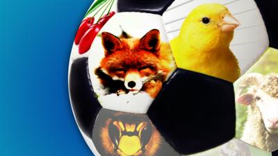 MOTD Kickabout - Quiz: Do you know these football nicknames?