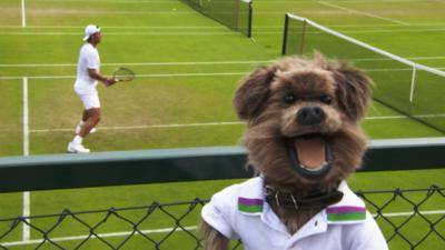 CBBC Office - Hacker's Wimbledon Quest