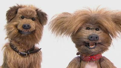 CBBC Office - Hacker and Dodge's Guide to Making Drama