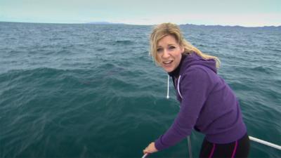 Naomi's Nightmares of Nature - Naomi's Whale Shark Nightmare