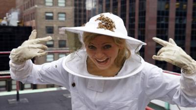 Naomi's Nightmares of Nature - Naomi's Honey Bee Nightmare