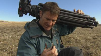Deadly Pole to Pole - Steve Backshall eats Musk Ox poo