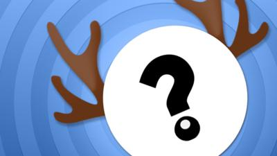 CBBC Office - Quiz: Which Reindeer Are You?