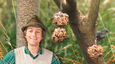 Mr Bloom: Here and There - Bird Feeder