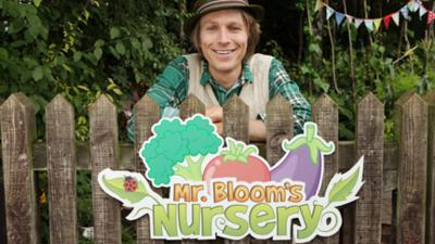 Mr Bloom's Nursery - Compost