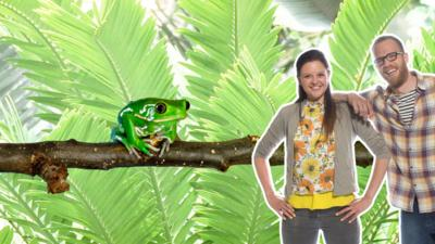Rory and Ferne from My Pet And Me with a tree frog on a branch.