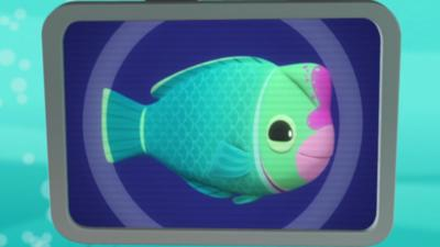 Octonauts - Humphead Parrotfish Creature Report