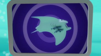 Octonauts - Manta Ray Creature Report