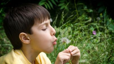 Mr Bloom's Nursery - Exploring the seasons with children