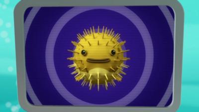Octonauts - Porcupine Puffer Creature Report