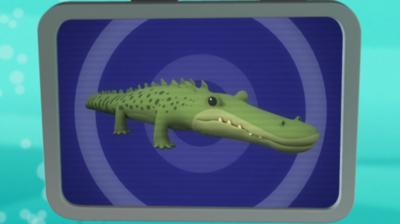 Octonauts - Saltwater Crocodile Creature Report