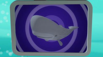 Octonauts - Sperm Whale Creature Report