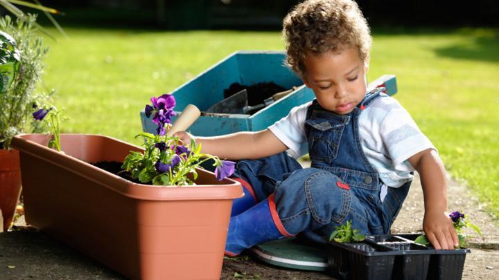 Gardening for kids cbeebies bbc for Gardening with children