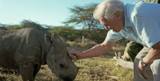 David Attenborough with a rhino