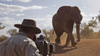Filming an elephant - homepage - talent costs