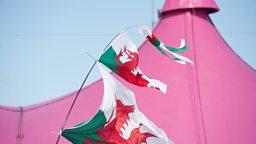 Eisteddfod 2013