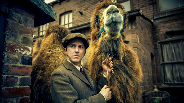 period drama ampc movie review our zoo