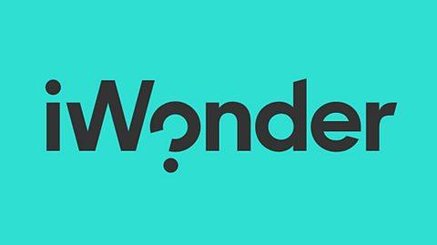 iWonder pitching opportunity: shortform video content