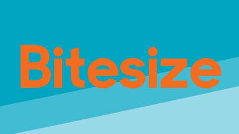 Commissioning opportunities for Bitesize video content