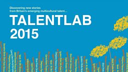 TalentLab 2015 - B3 Media