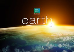 Goldcrest launches Earth One Amazing Day for Cannes: A feature film from BBC Earth Films and SMG Pictures