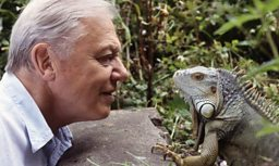 A BIRTHDAY GIFT FROM SIR DAVID ATTENBOROUGH  TO THE WORLD