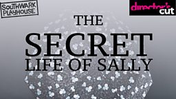 Director's Cut Theatre Company invites you to write for The Secret Life of Sally