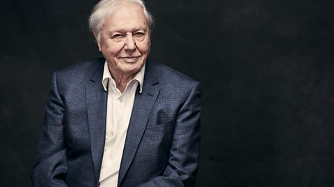 Sir David Attenborough to present Blue Planet II for BBC One