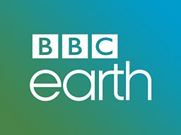 BBC Earth branded block launches on new documentary channel in South Korea