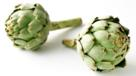 Globe artichoke