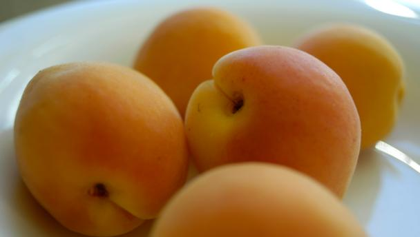 BBC - Food - Apricot recipes