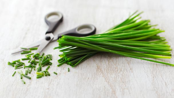 BBC - Food - Chives recipes