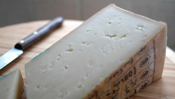 Fontina cheese