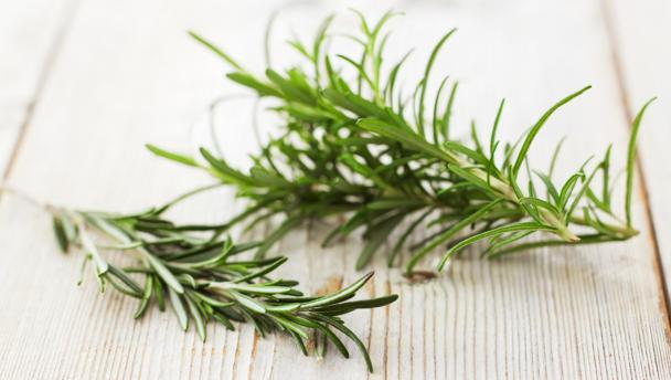 BBC - Food - Rosemary recipes