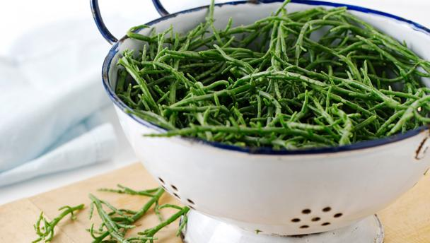 Samphire