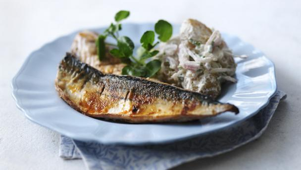 Bbc Food Mackerel Recipes