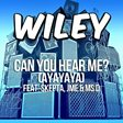 Can You Hear Me? (Ayayaya) (feat. Skepta, JME and Ms D)