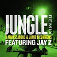 Jungle (Remix) (feat. JAY Z)