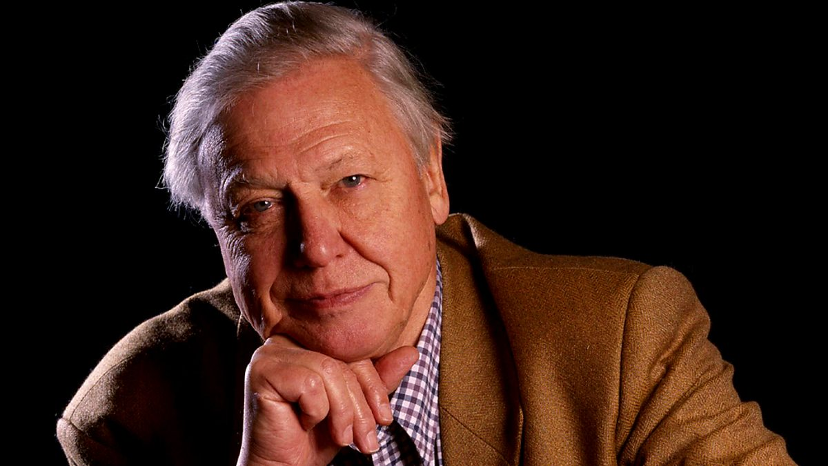 bbc radio 4 david attenborough 39 s life stories series 1 sloths. Black Bedroom Furniture Sets. Home Design Ideas