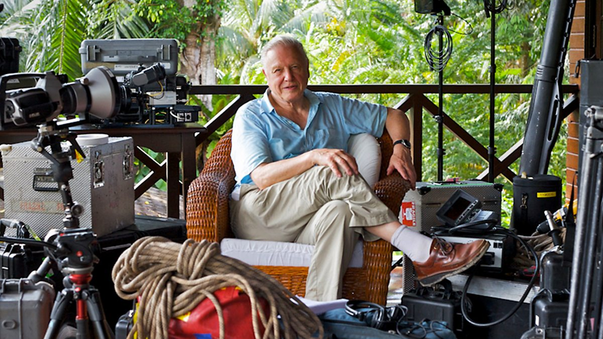 Attenborough: 60 Years In The Wild - 2. Understanding The Natural World