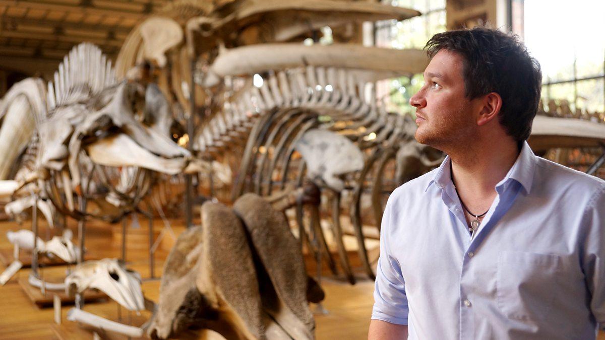 Secrets Of Bones - 1. Size Matters