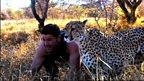 Cheetah race