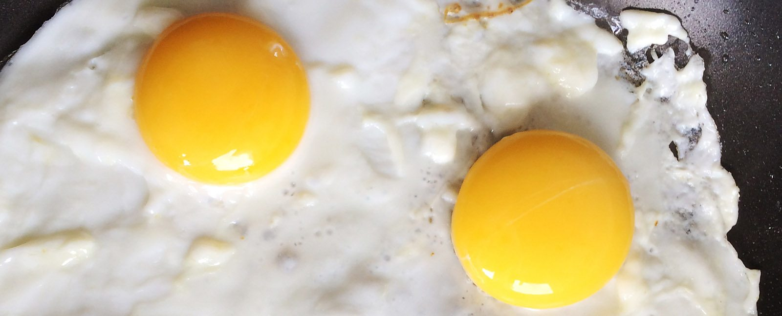 BBC iWonder - Should you worry about how much protein you eat?
