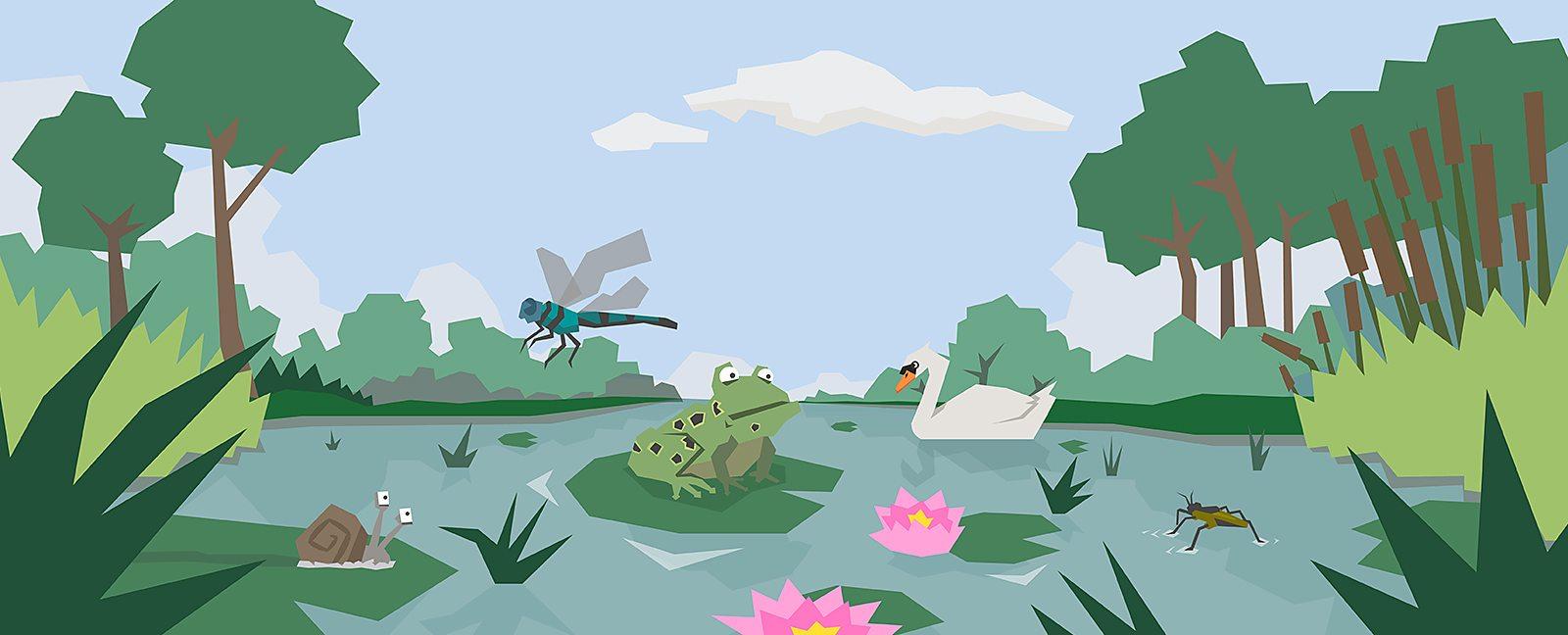 Bbc Bitesize What Is A Pond Habitat
